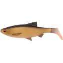 SG 3D LB River Roach Paddletail 22cm 125g 2pcs Dirty Roach