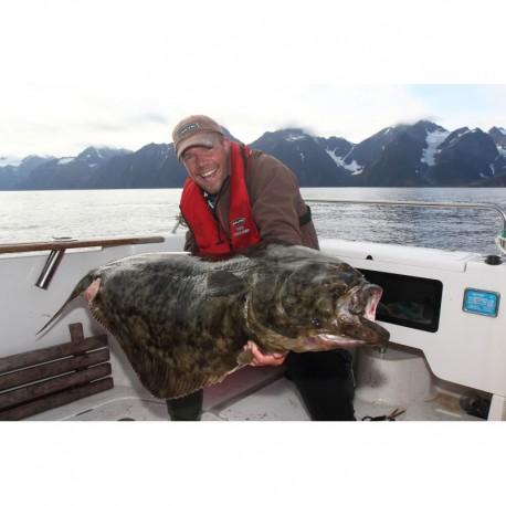 Lyngen fiskecamp