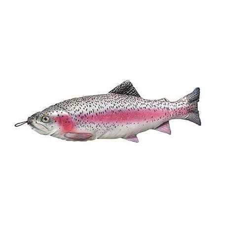 Fladen Mjukisfisk Regnbåge