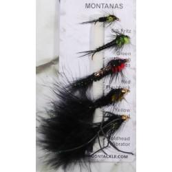 Dragon Flugor Montana